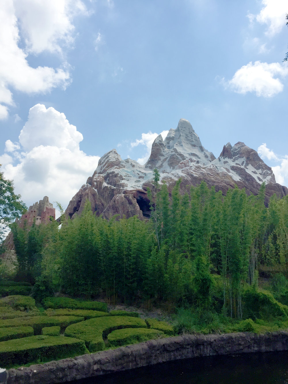 Everest is probably the most recognizable feature of Animal Kingdom, after the tree of life, and it houses one of the best coasters in Disney World - Expedition Everest!