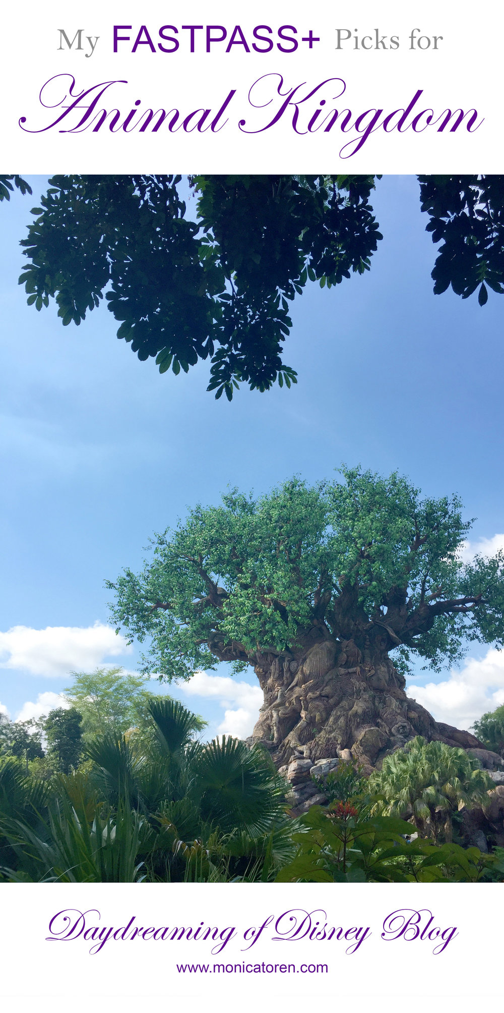 Daydreaming of Disney Blog - My Fastpass Picks for Animal Kingdom - http://www.monicatoren.com #disney #fastpass #disneyworld #disneyworldplanning