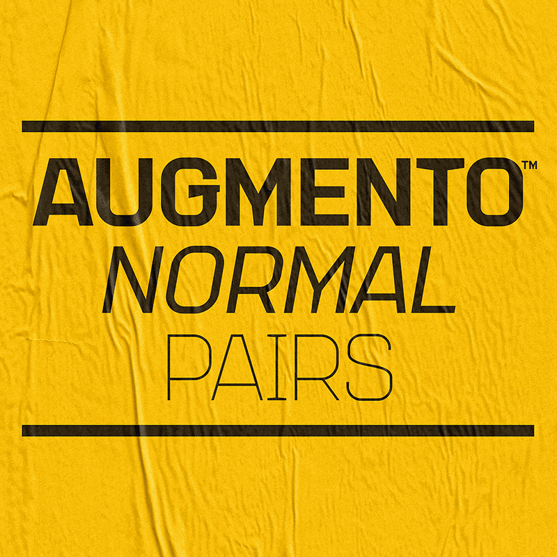 AugmentoNormalPairs.jpg