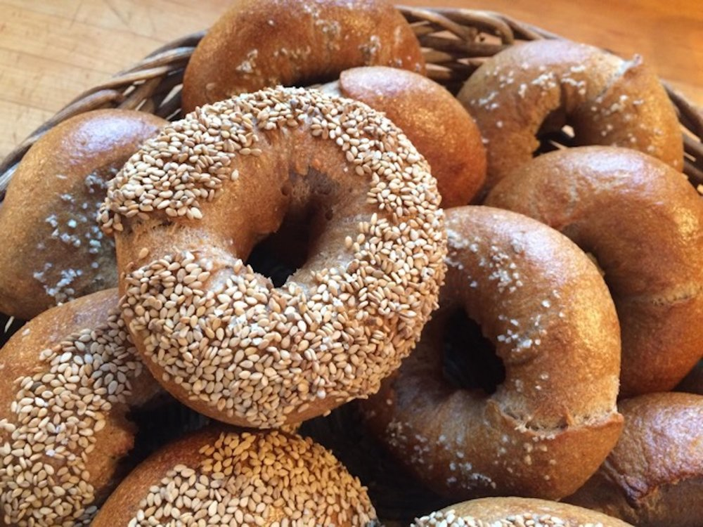 """Lauren made these bagels with 100% """"ROCK"""" sifted organic bread flour from The Mill at Janie's Farm."""