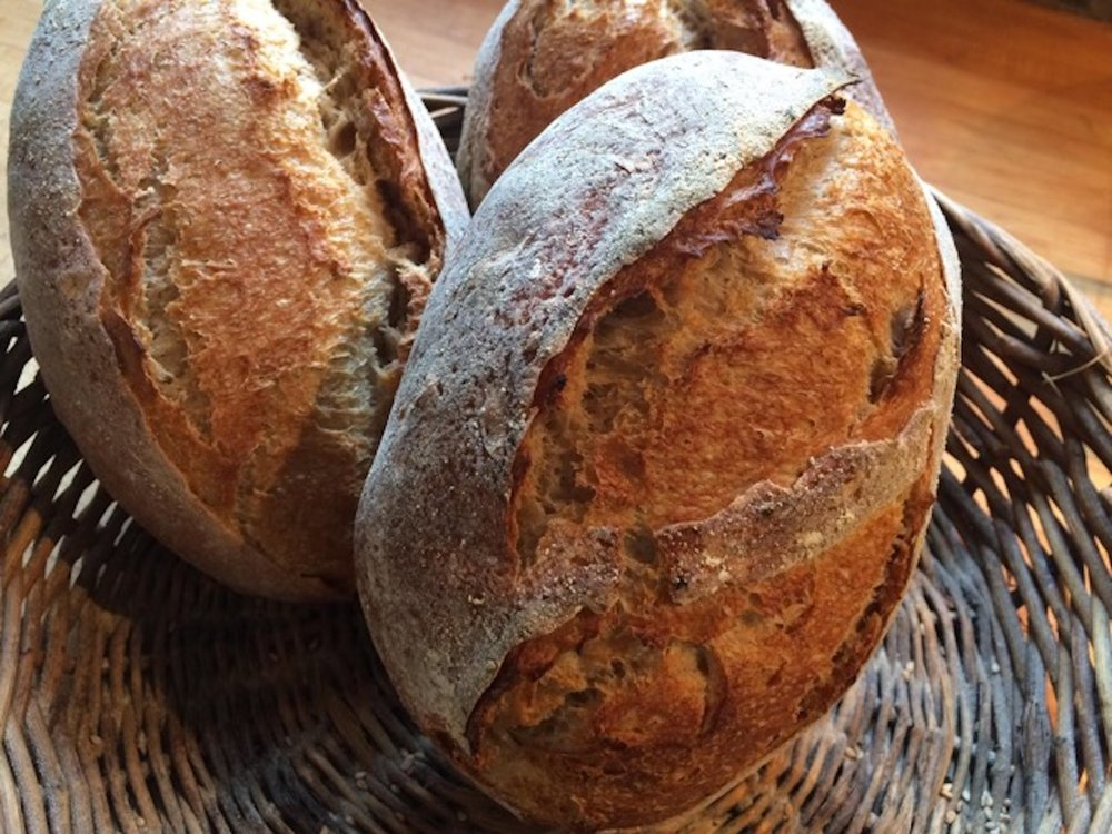 """Lauren made these Country Loaves with 100% """"IROQUOIS"""" All-Purpose Flour."""