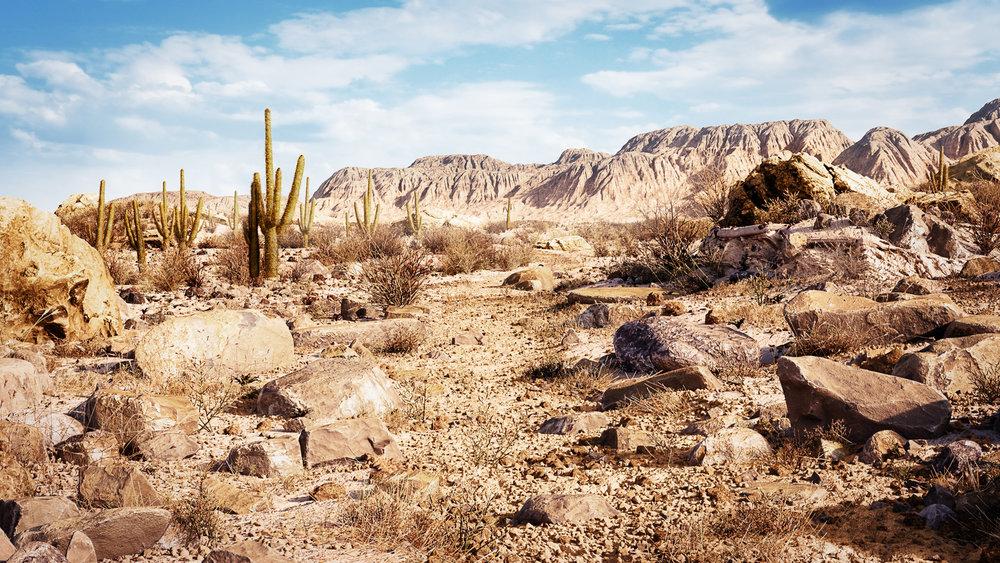 Desert-Mateusz.jpg