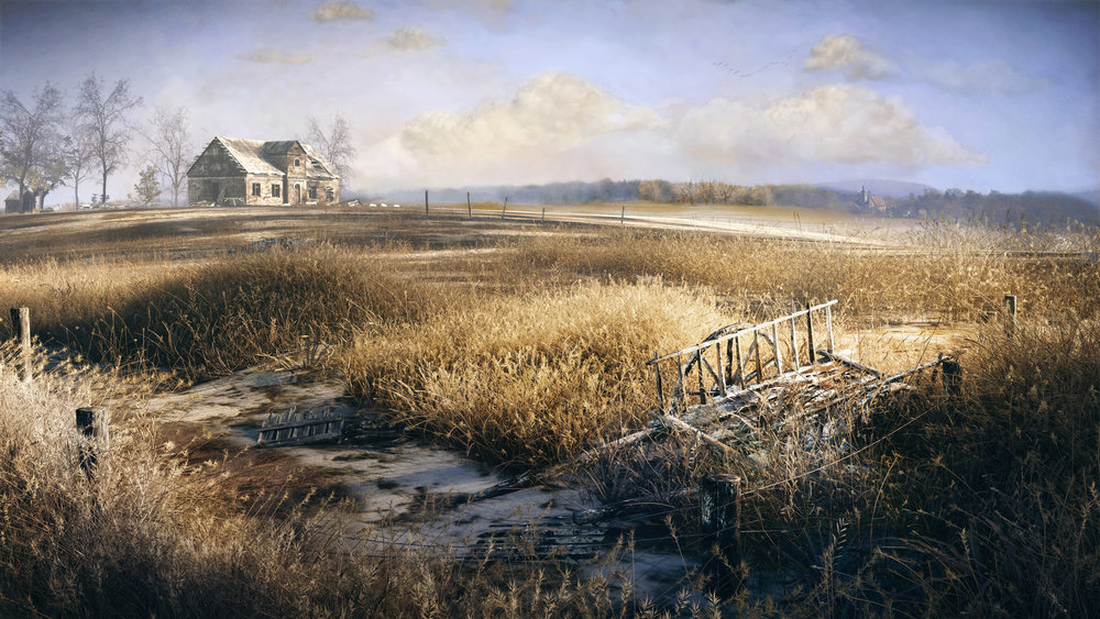 Wild-Grass-Field.jpg