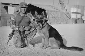 K9 soldier with dog