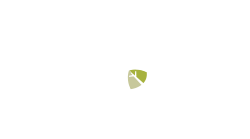The Burns Company