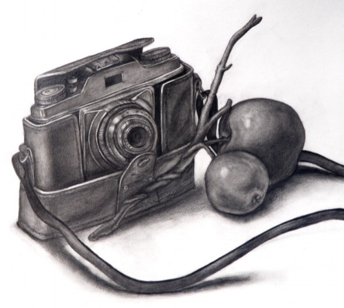 camera apple.jpg