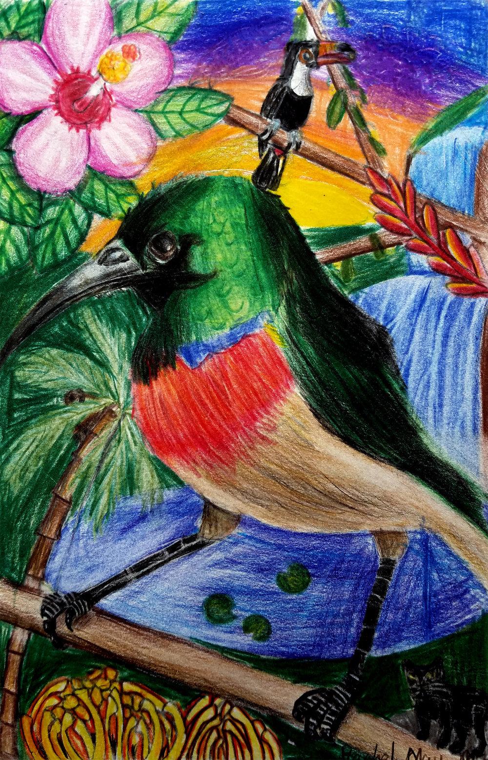 RACHEL BIRD.jpg