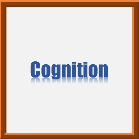 Cognitive skills are the foundation of learning and knowledge. At age two, children's cognitive skills are progressing rapidly. Children are challenged to become more aware of their environment by asking questions and solving problems in their own way.  Activities are designed to encourage children to distinguish between textures, to identify shapes and colors, recognize emotions, ask questions and peek curiosity.