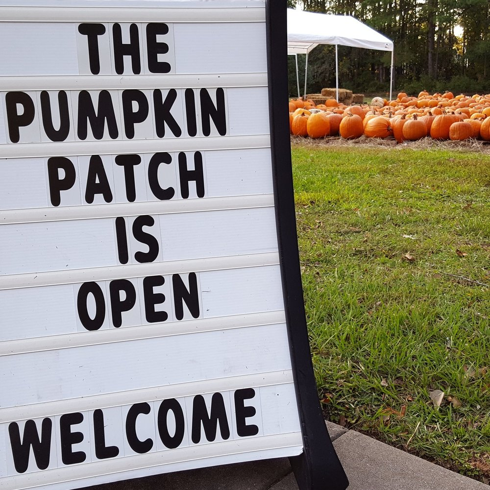 Church Pumpkin Patch Ashley River Road Charleston