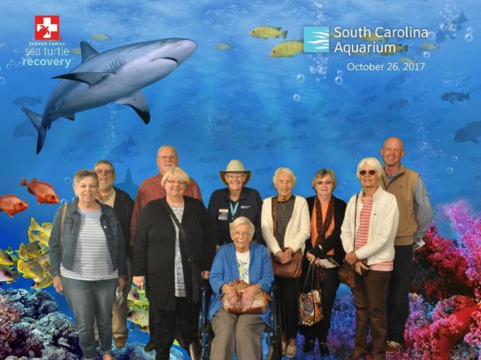 Aquarium trip 2 10-2017.png