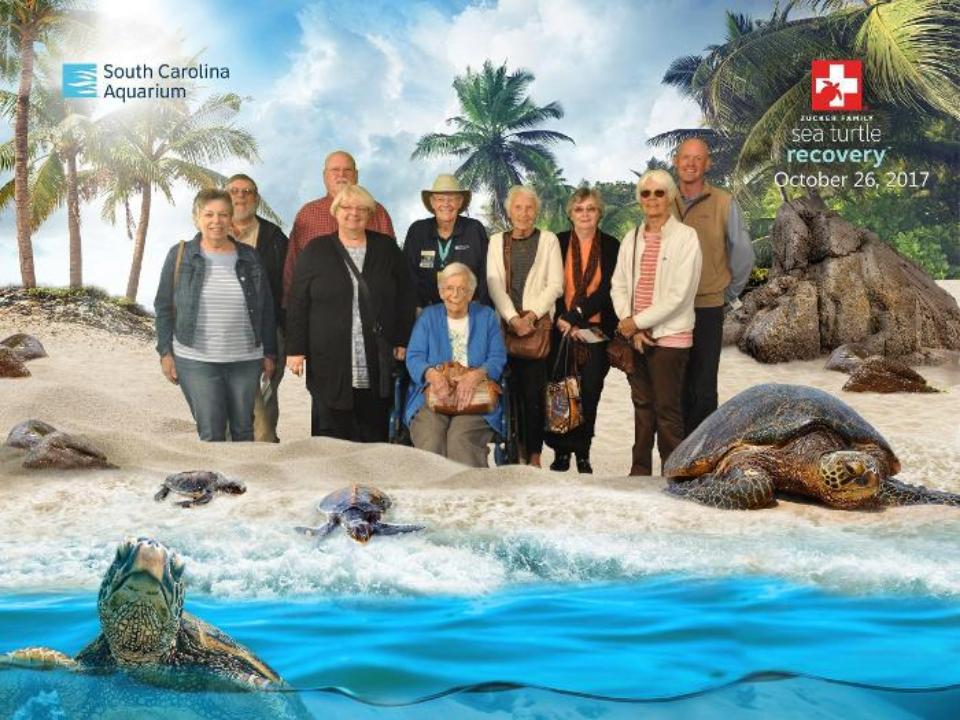 Aquarium trip 10-2017.png
