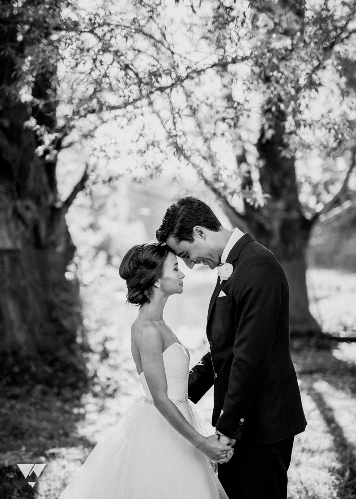 herafilms_carlotta_alex_wedding_hera_web-39.jpg