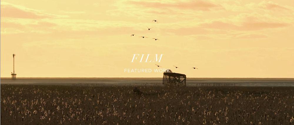 NewFilmThumbnailsFrontnew2.jpg