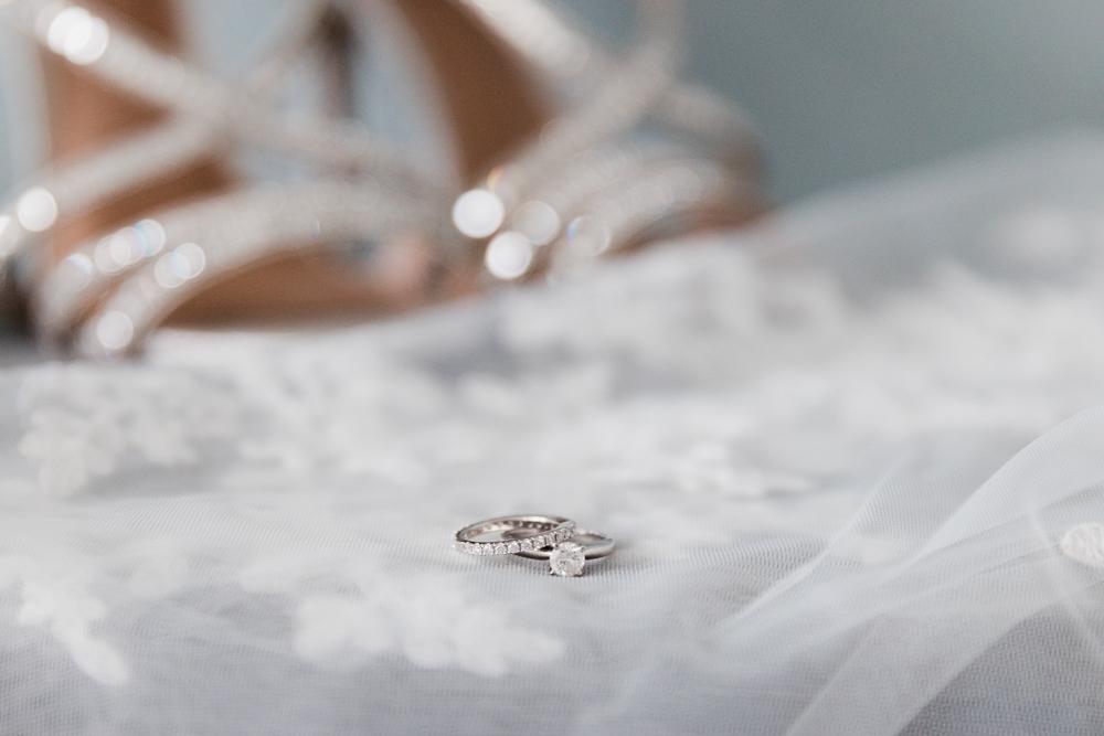 herastudios_wedding1_danica_sanjeev_collectors_package-40.jpg
