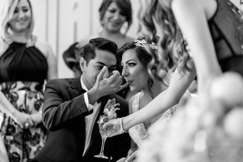 herastudios_wedding_azin_farhad_collector_package-288.jpg