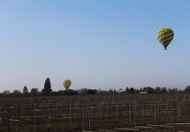 Hot air balloons over Napa