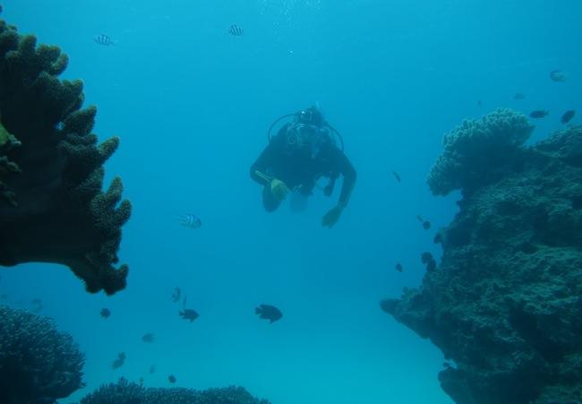 Scuba diving okinawa japan