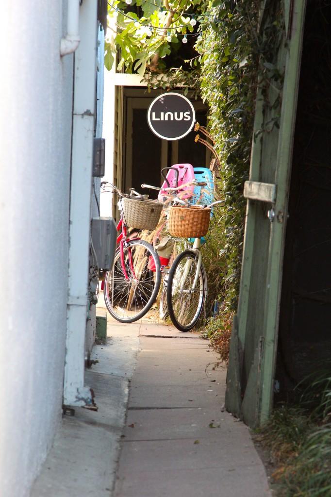 Linus bike shop, Venice, California