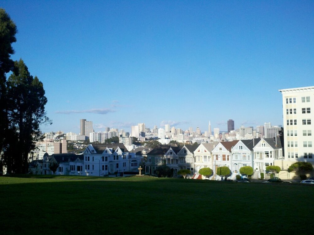 The Painted Ladies (And oh San Francisco)