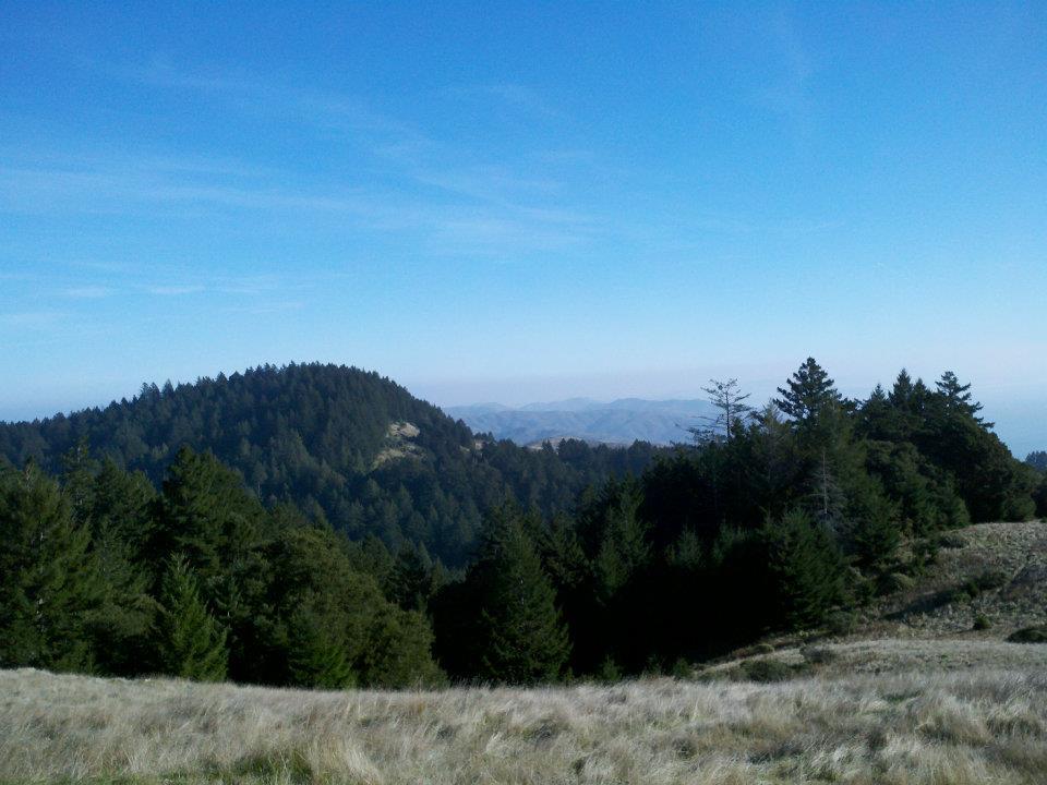 Mt-Tam-winding.jpg