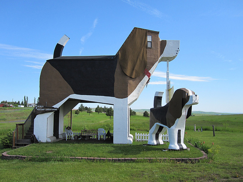 Dog-bark-park-inn.jpg