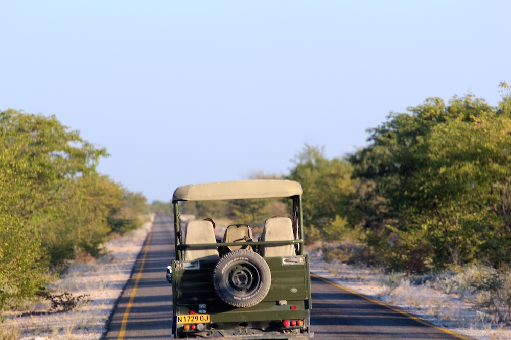 A Budget Africa Safari for Less Than $1,000, Part One
