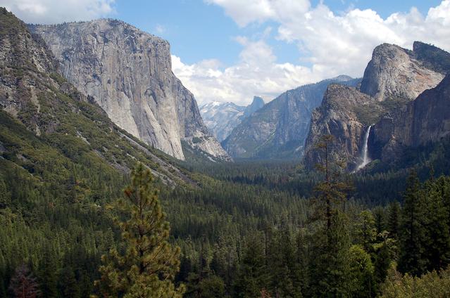 Yosemite-National-Park-Road-Trip.jpg