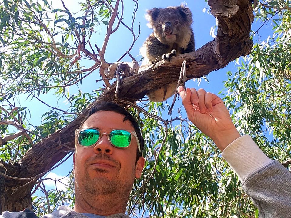 Koala-selfie.jpg