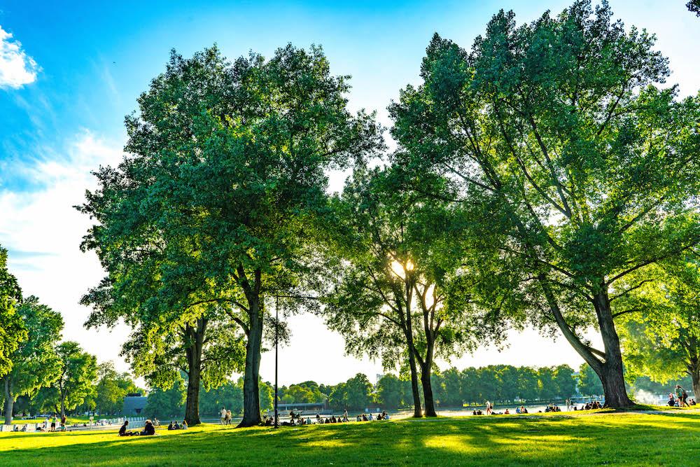 Dusseldorf Hiroshima and Nagasaki Park.jpg