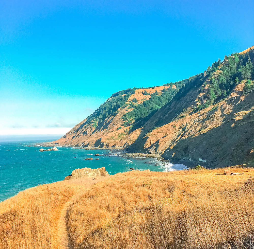 California Lost Coast Hiking Trail.jpg