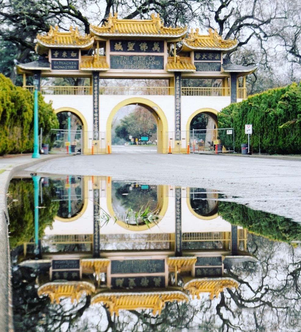 Ten Thousand Buddhas.JPG