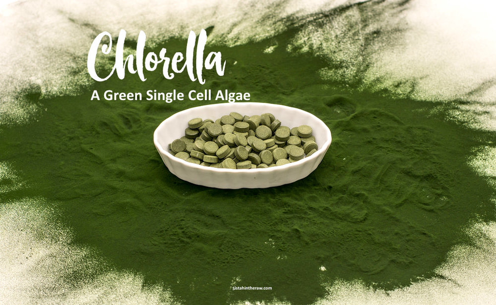 chlorella.jpg