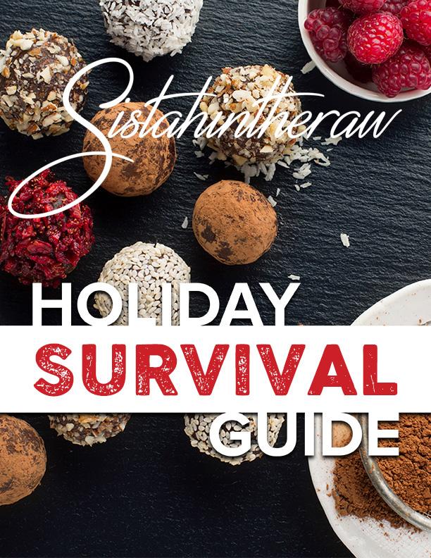 HolidaySurvivalGuideCover-2D.jpg