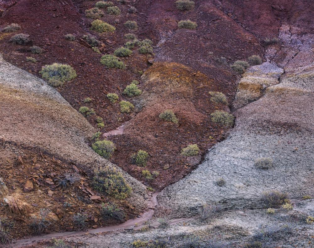 Convergence  | Capitol Reef National Park, Utah