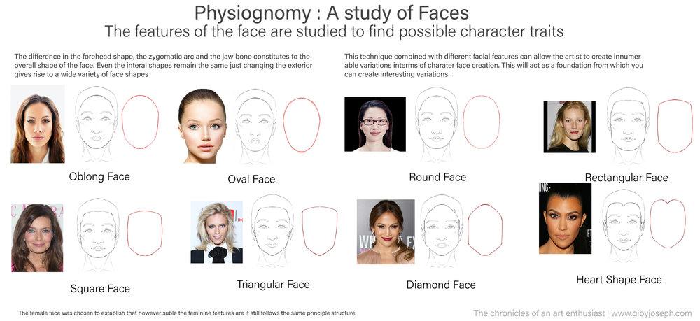 Physionomy study.jpg