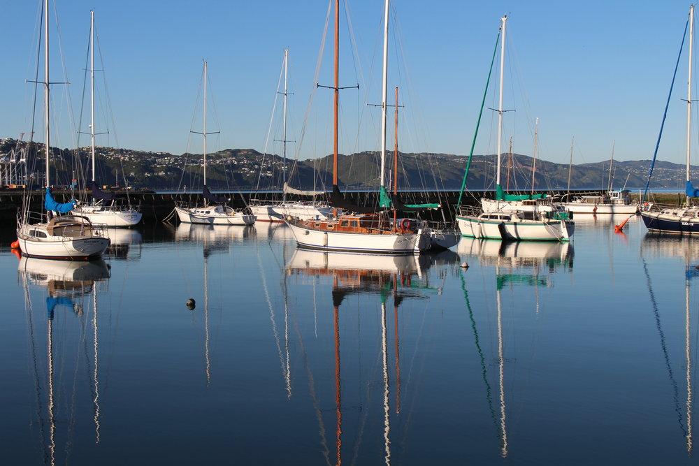 The Marina in Wellington