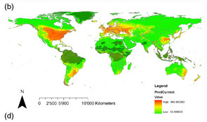 Ragweed World Wide
