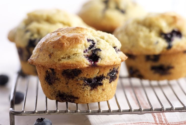 blueberry muffin.jpg