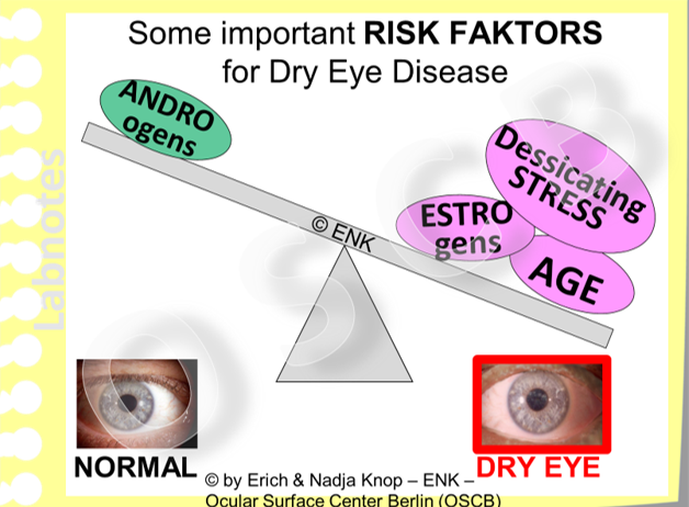 Several Influence Factors promote Dry Eye Disease.  This concerns a reduced level of male sex hormones (androgens) or an increased level of female sex hormones (Estrogens). Advance age and environmental factors that promote a desiccation of the ocular surface promote the risk for Dry Eye.