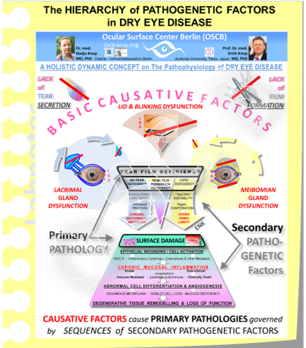 The process of DIAGNOSIS becomes easier to understand when we remember the basic course of pathophysiology in DRY EYE DISEASE because this indicates events that can be analyzed. BASIC CAUSATIVE FACTORS, i.e. a deficiency of tear secretion and/or a deficiency of tear film formation, lead to the PRIMARY PATHOLOGIES of Tear FIlm Deficiency of different type and/or Ocular Surface Tissue Damage of any kind (which both certainly influence each other). Both of the Primary Pathologies area governed by Sequences of SECONDARY PATHOGENETIC FACTORS.  All explained factors and events may represent potential targets for Diagnosis .