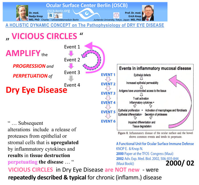 OSCB-BILD_6_Dry Eye Disease_VICIOUS CIRCLES - Schema + MAUI 2002_Folie48_25cm-72dpi.png