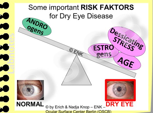 Important RISK FACTORS