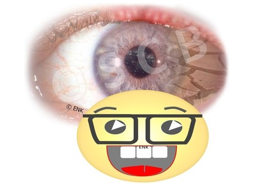 ZIELGRUPPEN-Symbol-Bilder+VERSCHIEDENE+4+SCIENTIST+mit+Auge.jpg