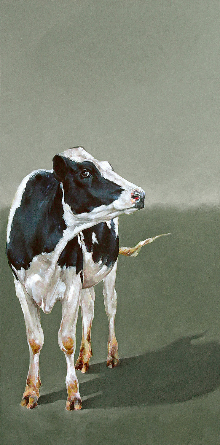 Holstein on Green  |  18 x 36|  Oil on canvas