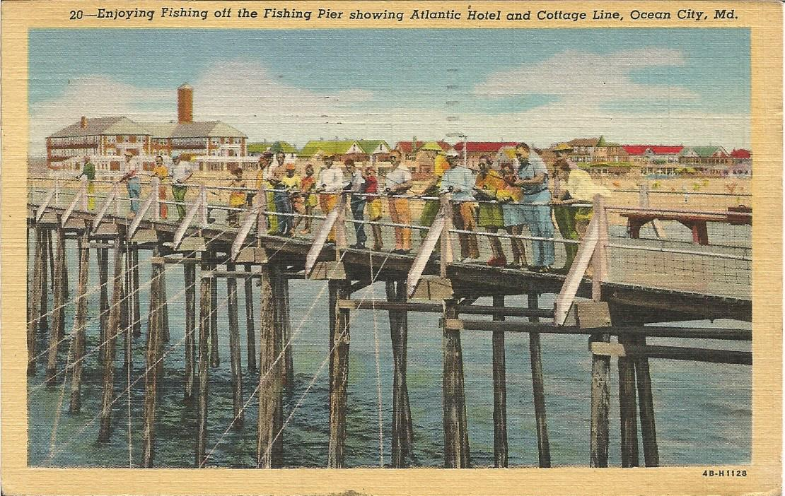 Hollyhock run for Ocean city md fishing pier