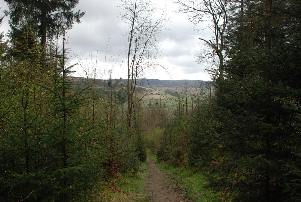 Peak District Climb