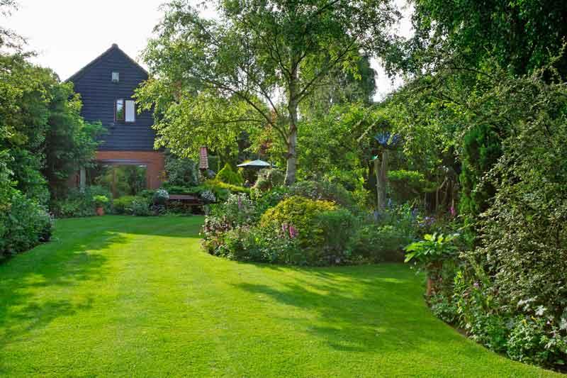 lovely-lawn-BAUER.jpg