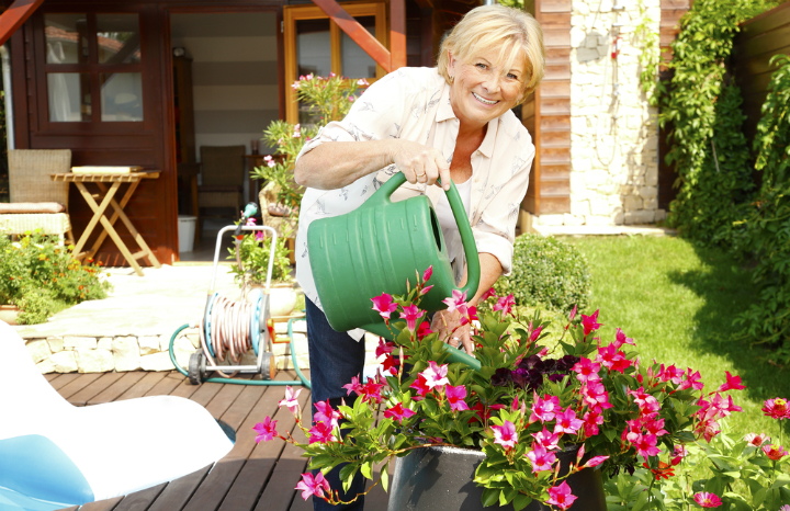 gardening-summer-neighbours.jpg