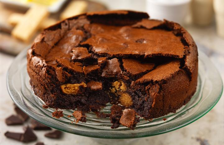 Chocolate-Mousse-Cake-copy.jpg