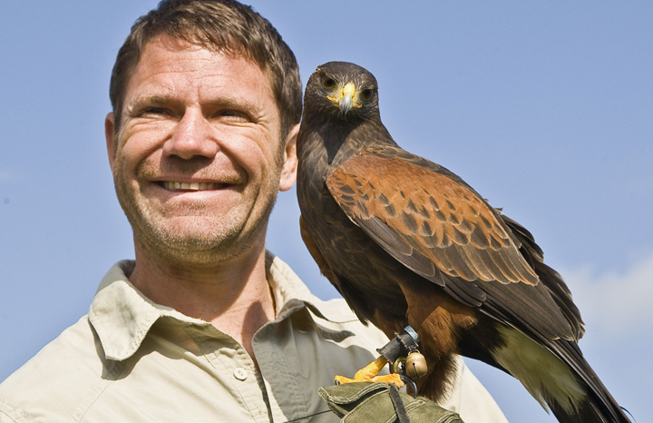rexfeatures_3711005d_Whipsnade-Zoo-2014-with-the-lanner-falcon.jpg